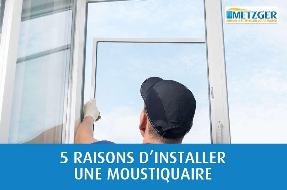 5 raisons d'installer une moustiquaire