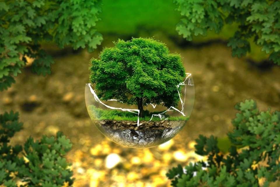 L'isolation : importante pour l'environnement